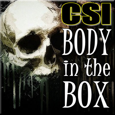 CSI Body in the Box - Thinkers in Education CSI Workshops For Schools. A skull with a letter engraved on the top set the mood of this two hour activity.